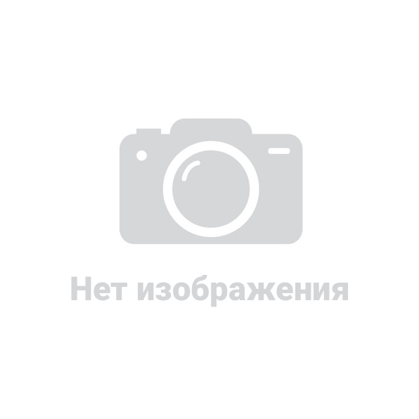 Национальные виды спорта в республике казахстан